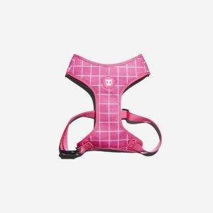 Zee.Dog Pink Wave // Air Mesh